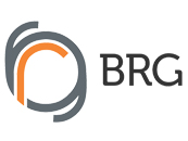 BRG Iron & Steel Co. Pvt. Ltd.