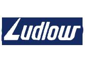 Ludlow Jute & Specialities Ltd