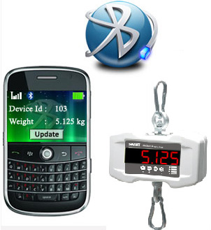 Bluetooth Hanging Scale